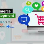Top eCommerce Website Development Company Melbourne